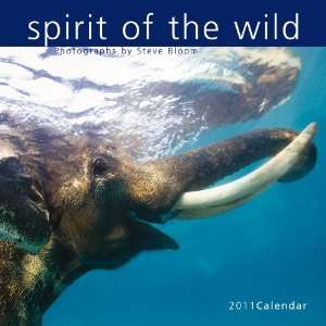 2011 Animal Calendars Spirit Of The Wild   12 Month   30x30cm